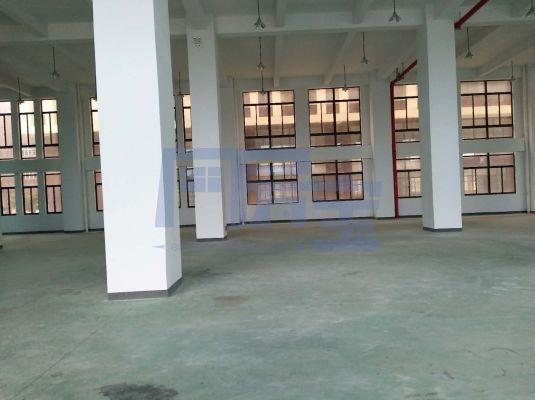 松江区民强路厂房出租