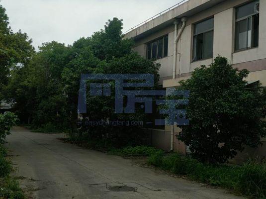 青浦区竹盈路128厂房出租