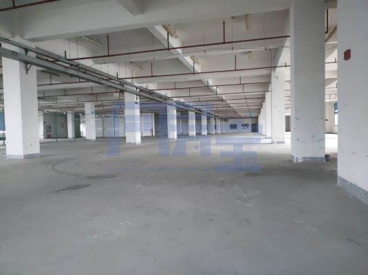 松江区新飞路厂房出租