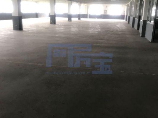 宝山区杨行工业园路厂房出租