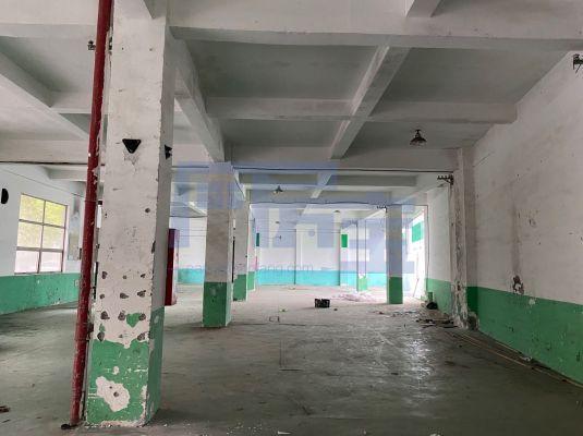 松江区新加路厂房出租
